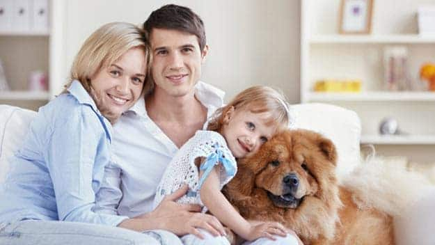 Wills & Trusts dog-young-family Direct Wills Penrith